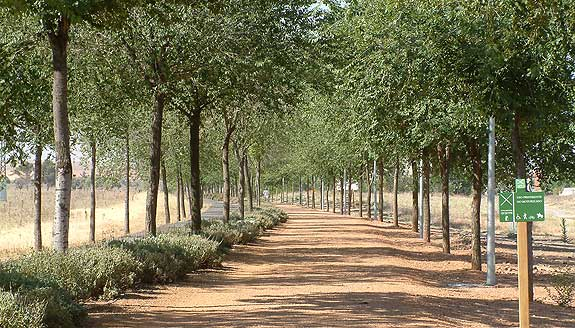 Plazas y jardines for Jardines del prado